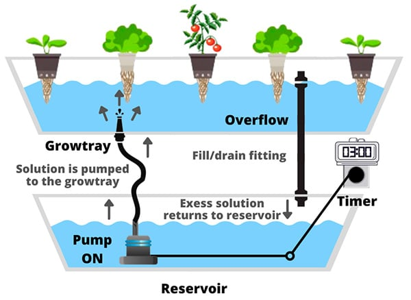 pump on Ebb and Flow Flood and Drain hydroponic system schema example