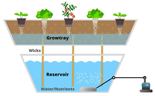 Wick Hydroponic Systems schema example with roots in soil