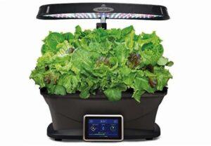 aerogarden grow herbs veggies leafy greens