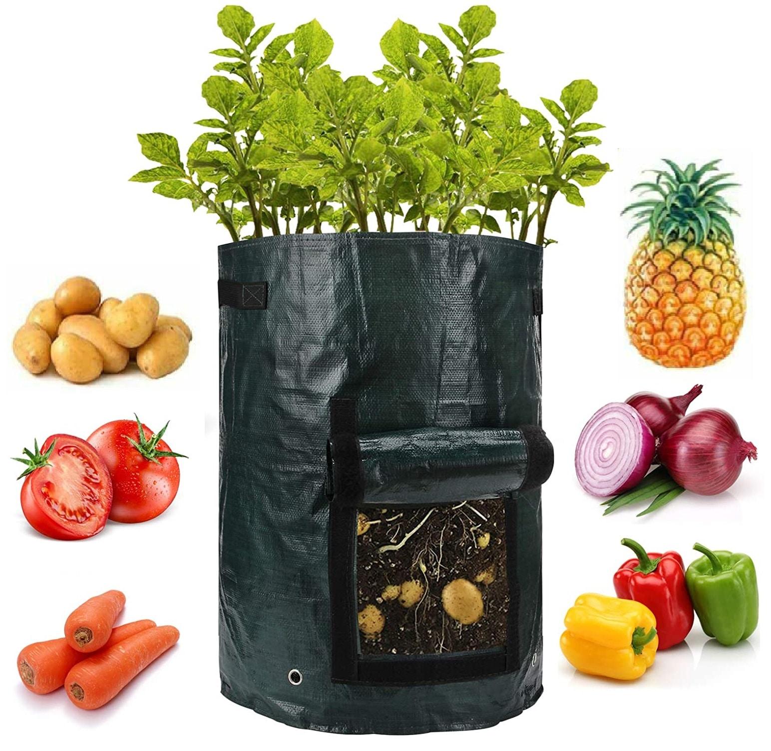 ANPHSIN Grow Bags – Best 10 Gallon Grow Bags