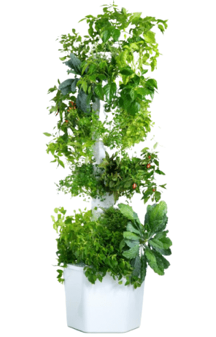 Aerospring 27-Plant Vertical Hydroponic, Aeroponic Outdoor Growing System – Best Overall