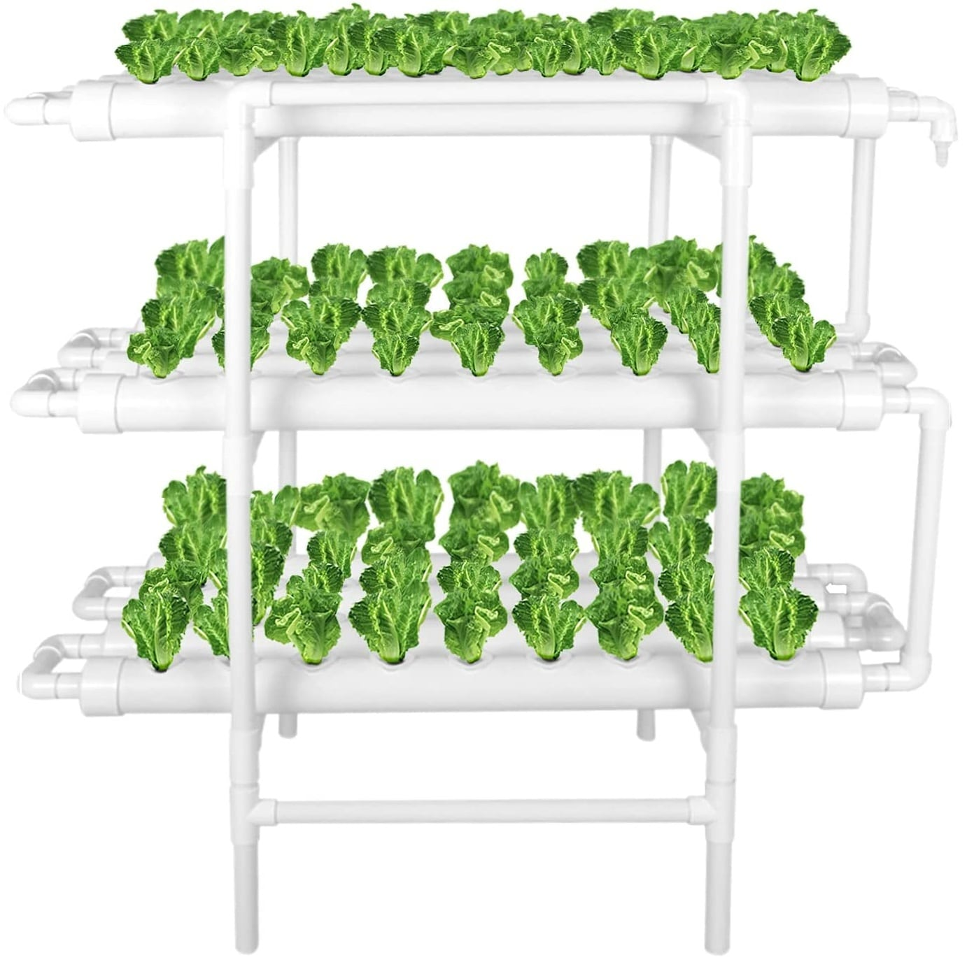 LAPOND Hydroponic Grow Kit – Best Easy to Assemble and Use