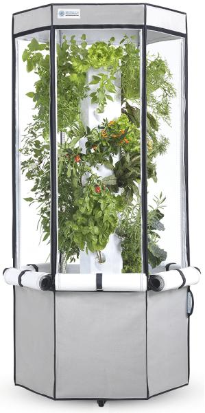 An Aeroponics Indoor Growing System – Best Indoor System