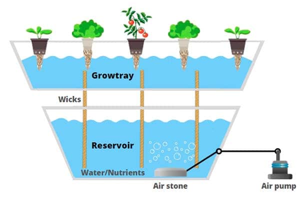 wick-hydroponic-systems