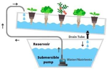 hydroponics nft system nutrient film technique