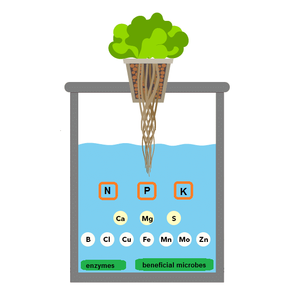 nutrient solution for hydroponic systems