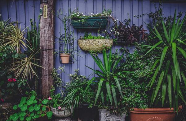 What is Vertical Herb Garden exampel 1