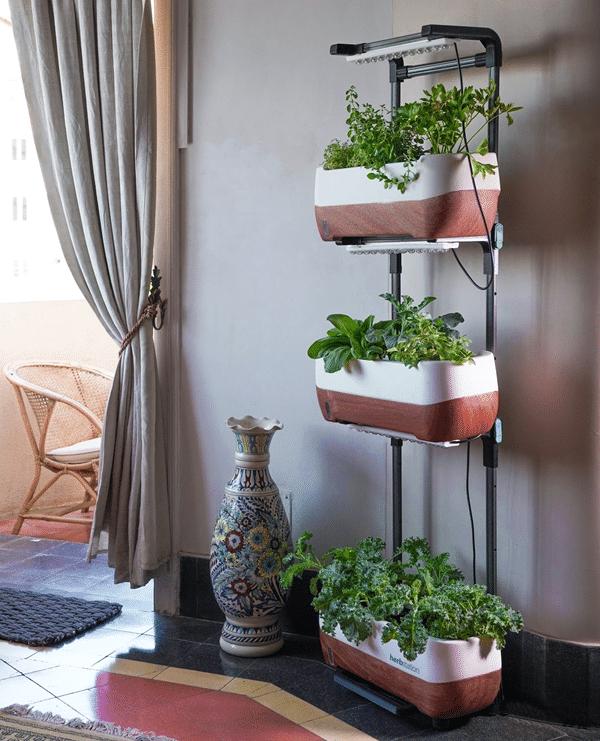 Indoor vertical herb garden exampel 2